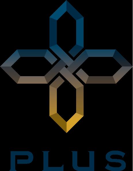 mainvis-logo-wrap